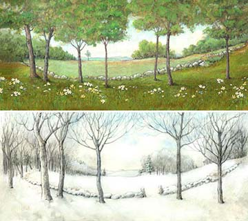 Summer or Winter background and base for Collectible Display Box - Wee Forest Folk
